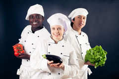 Multi-ethnic Group Of Cooks stock photos
