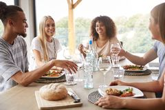 Multi ethnic group of five young adult friends eating, drinking, talking and smiling during a dinner party royalty free stock images