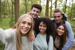 Multi ethnic group of five young adult friends taking a selfie in a forest during a hike, portrait royalty free stock photo