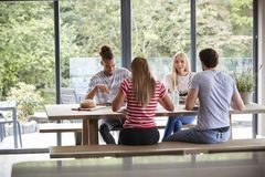 Multi ethnic group of four young adult friends talking and eating meal during a dinner party stock image