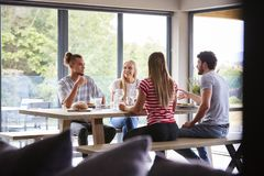 Multi ethnic group of four young adult friends talking and smiling during a dinner party royalty free stock photo