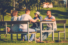 Multi-ethnic group of friends chatting in a park Royalty Free Stock Image