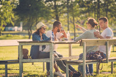 Multi-ethnic group of friends chatting in a park Royalty Free Stock Images