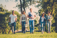 Multi-ethnic group of friends in a park Royalty Free Stock Image
