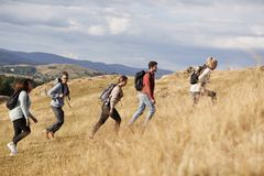 Multi ethnic group of happy young adult friends climbing a hill during a mountain hike, side view stock image