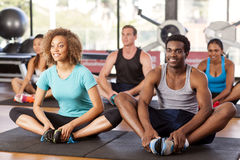 Multi-ethnic group stretching in a gym. Before their exercise class Stock Photos