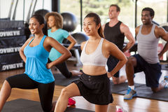 Multi-ethnic group stretching in a gym. Before their exercise class Stock Images
