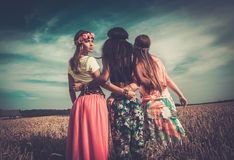 Multi-ethnic hippie girls in a wheat field.  Royalty Free Stock Image