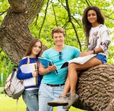 Multi ethnic students  in a city park Royalty Free Stock Photography