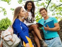 Multi ethnic students in park Stock Photo