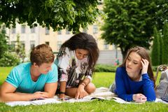 Multi ethnic students in park Royalty Free Stock Image