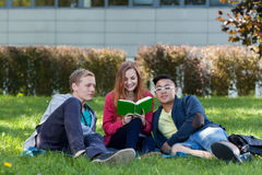 Multi-ethnic students reading book. On the grass Royalty Free Stock Photography