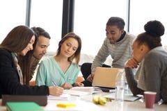 Multi-etnische groep jongeren die samen bestuderen Stock Foto