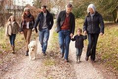 Multi família da geração na caminhada do campo fotos de stock royalty free