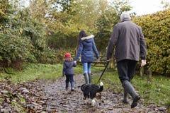 A multi família da geração toma o cão para a caminhada na paisagem da queda imagem de stock