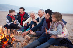 Multi famiglia della generazione che ha barbecue sulla spiaggia di inverno fotografia stock libera da diritti