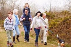 Multi famiglia della generazione con il cane sulla passeggiata della campagna Immagini Stock
