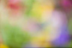 Multi farbiger Hintergrund Lizenzfreie Stockfotografie
