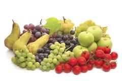 Multi Früchte Lizenzfreie Stockbilder
