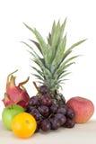 Multi Früchte Lizenzfreie Stockfotografie