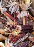 Multi gekleurd graan bij landbouwbedrijftribune Royalty-vrije Stock Afbeeldingen
