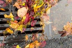 Multi gekleurde bladeren die een straatafvoerkanaal belemmeren stock fotografie