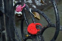 Multi Gekleurde die sloten op ijzergrating worden gesloten Royalty-vrije Stock Foto's