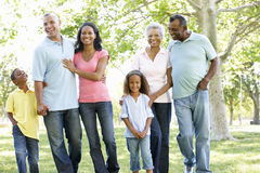 Multi Generation African American Family Walking In Park royalty free stock image