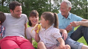 Multi Generation Family Enjoying Picnic In Countryside stock footage