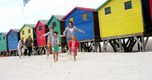 Multi generation family flying kite at beach stock video
