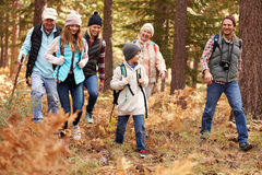 Multi generation family hiking in a forest, California, USA royalty free stock image