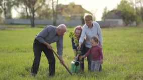 Multi generation family planting tree outdoor. stock footage