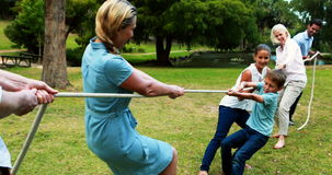 Multi-generation family pulling a rope in tug of war. In park stock video footage