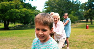 Multi-generation family pulling a rope in tug of war. In park stock footage