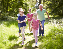 Multi Generation Family Running Through Summer Countryside Stock Images
