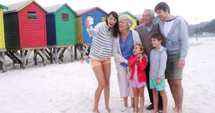 Multi generation family taking selfie from mobile phone at beach stock video footage