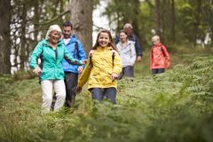 Multi generation family walking downhill on a trail in a forest during a camping holiday, Lake District, UK royalty free stock photo