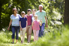 Multi Generation Family Walking Through Summer Countryside Royalty Free Stock Image