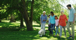 Multi-generation family walking with their dog in the park. On a sunny day stock video