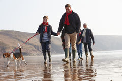 Multi Generation Family Walking On Winter Beach With Dog Stock Photo