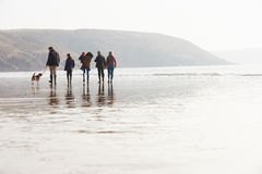 Multi Generation Family Walking On Winter Beach With Dog Royalty Free Stock Photos