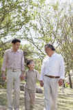 Multi-generational family, grandfather, father, and son holding hands and going for a walk in the park in springtime Royalty Free Stock Images