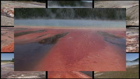 Multi Geyser Royalty Free Stock Photos