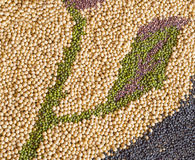 Multi-grain, beans Royalty Free Stock Photography