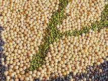 Multi-grain, beans Royalty Free Stock Photos
