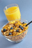 Multi grain cereal with blueberry 2 Stock Image