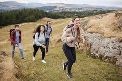 Multi grupo étnico de cinco amigos adultos novos que caminham através de um campo subida para a cimeira, fim acima imagem de stock royalty free