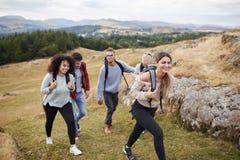 Multi grupo étnico de cinco amigos adultos novos que caminham através de um campo subida para a cimeira, fim acima fotos de stock royalty free