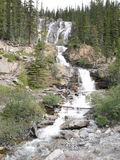 Multi-level Waterfall in Jasper National Park. With beautiful trees and mountain backdrop royalty free stock images