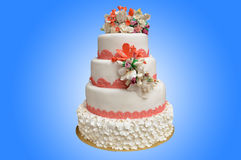 A multi level white wedding cake with pink flowers on top. Isolated on blue background Stock Image